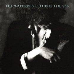 THE WATERBOYS - THIS IS THE...