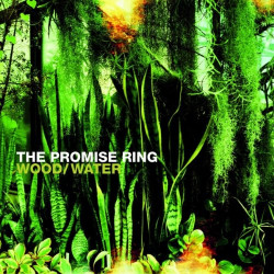 THE PROMISE RING - WOOD/WATER