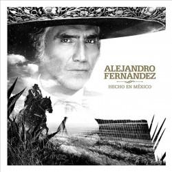 ALEJANDRO FERNÁNDEZ - HECHO...