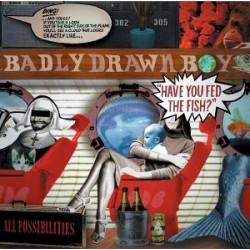 BADLY DRAWN BOY - HAVE YOU...