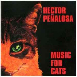 HECTOR PE¥ALOSA - MUSIC FOR...