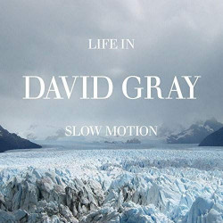 DAVID GRAY - LIFE IN SLOW...