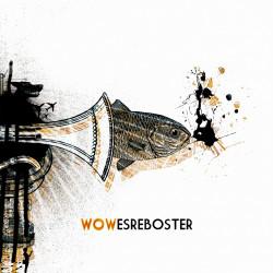 ES REBOSTER - WOW
